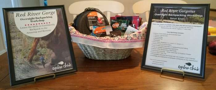 Explorer Chick City Chicks for Charity basket