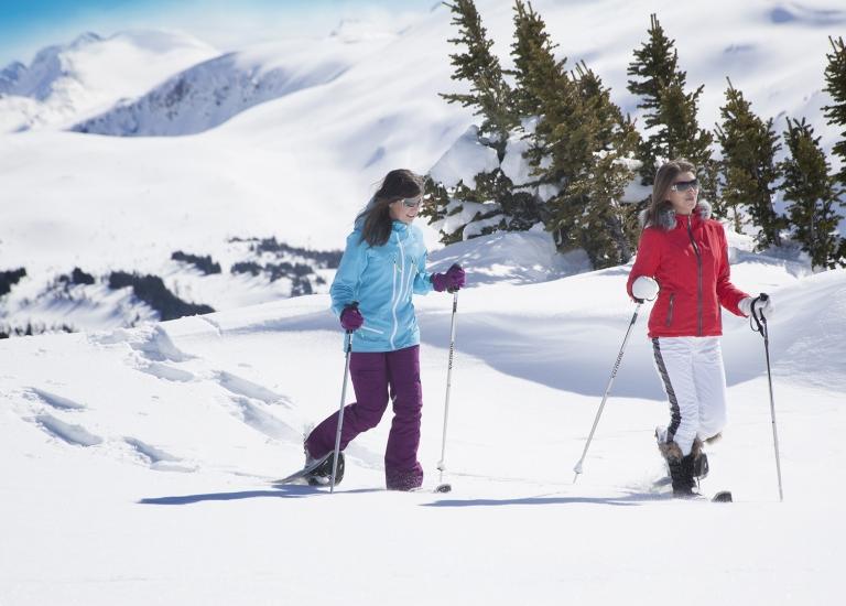 Banff Winter Wanderland Adventure
