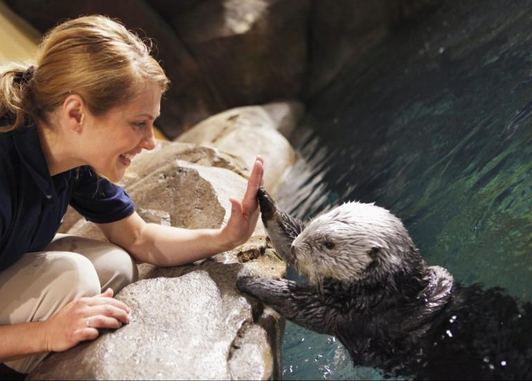 Georgia Aquarium Under the Sea Slumber Party
