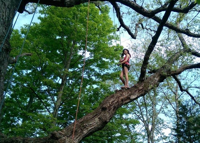 Kentucky Tree Climbing Adventure