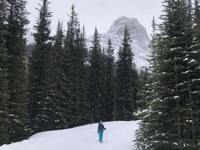 woman snowshoeing into elizabeth parker snow hut in the canadian rockies